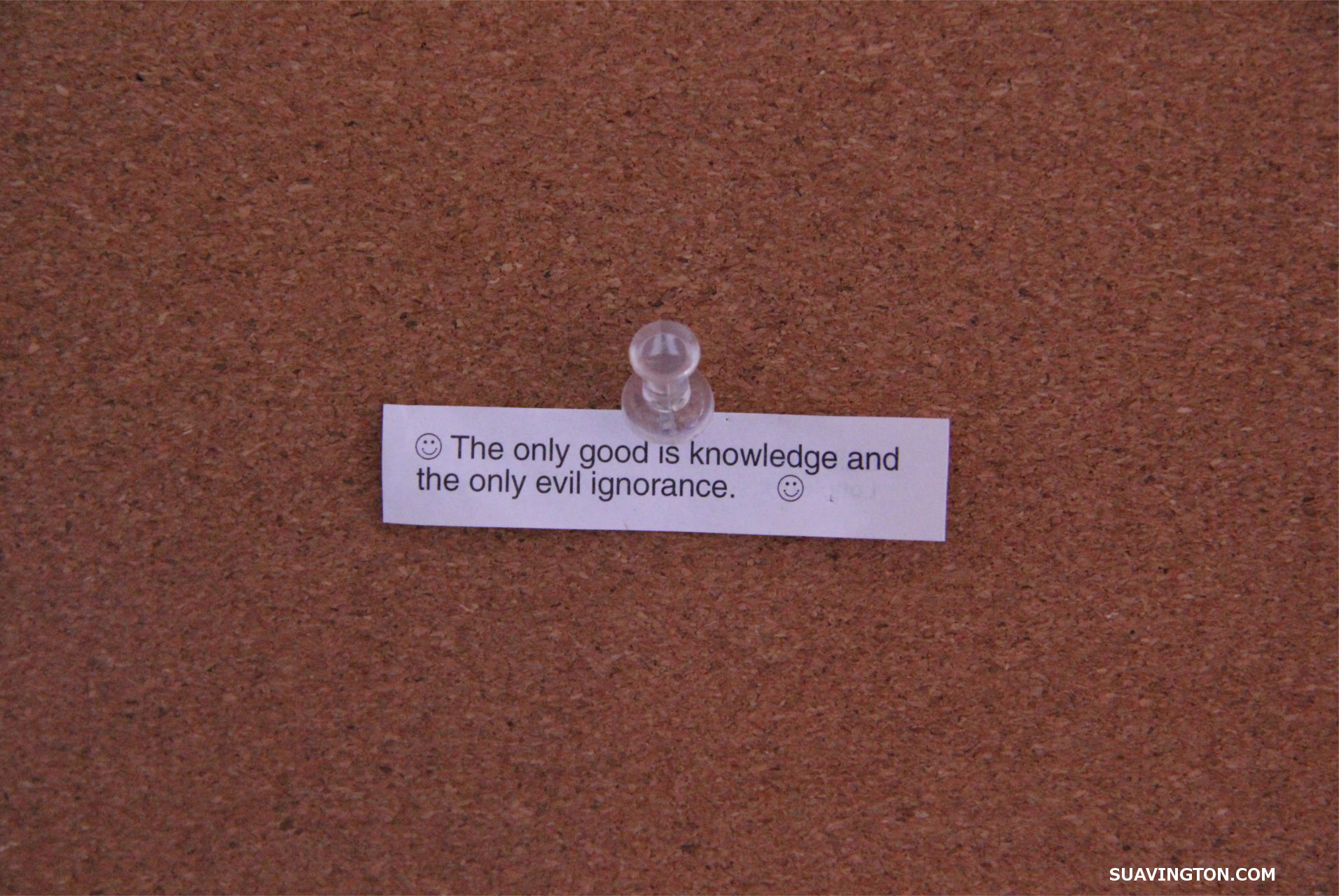The Only Good is Knowledge and the Only Evil is Ignorance