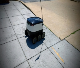 This Delivery Robot is Roaming the City
